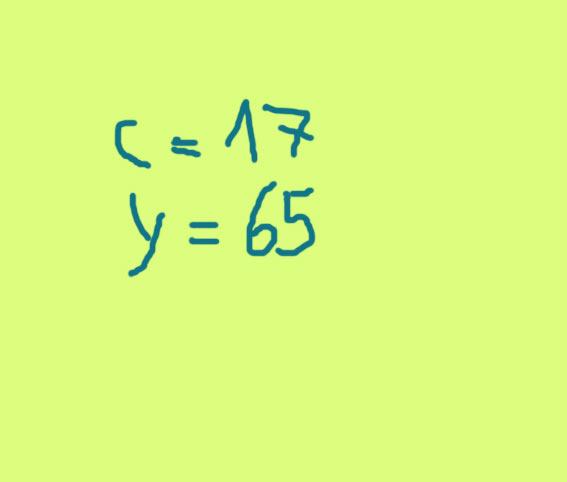 c17y65.jpg