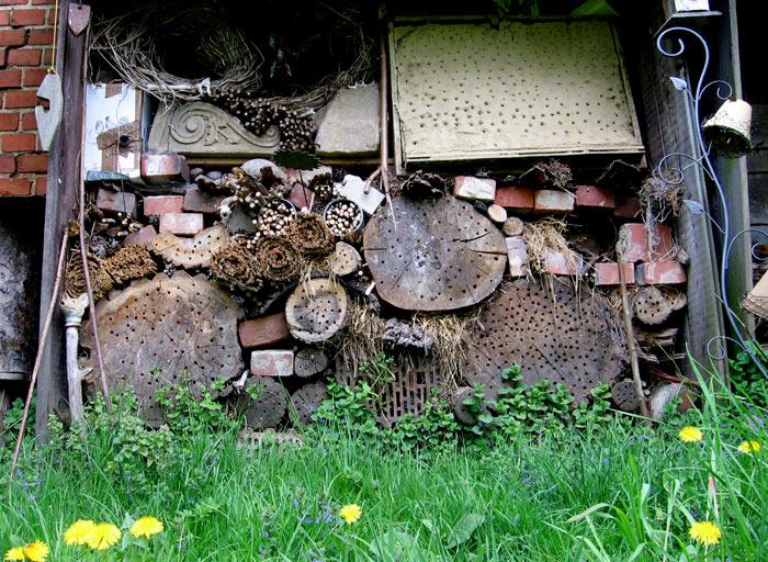 ritters-wildbienenwand.jpg